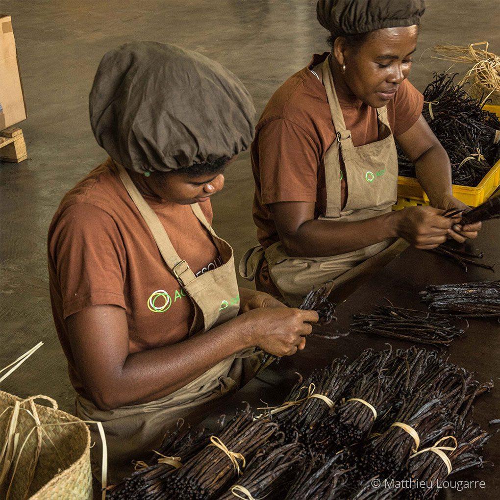 Agri-Madagascar-Our-Work-©-Matthieu-Lougarre-3-1020x1020px
