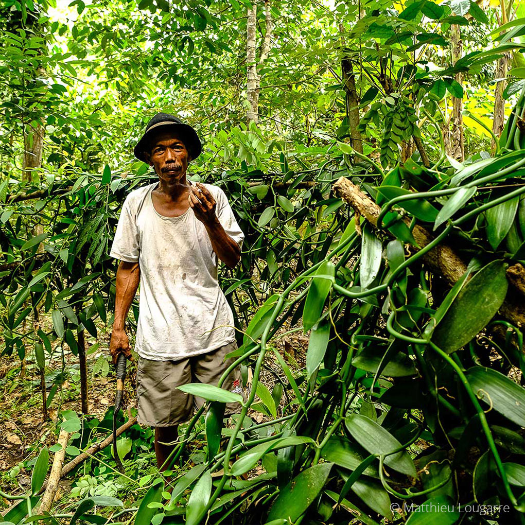 Agri-Madagascar-Our-work-©-Matthieu-Lougarre-6-1020x1020px
