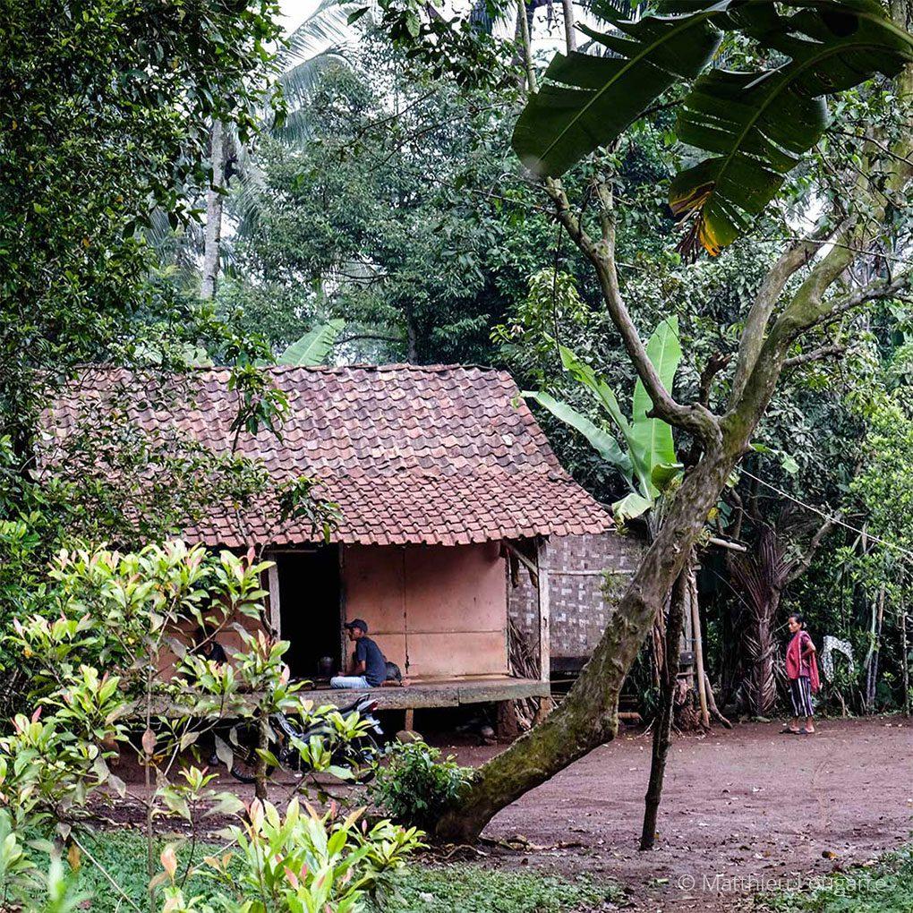 Agri-Madagascar-Our-work-©-Matthieu-Lougarre-8-1020x1020px
