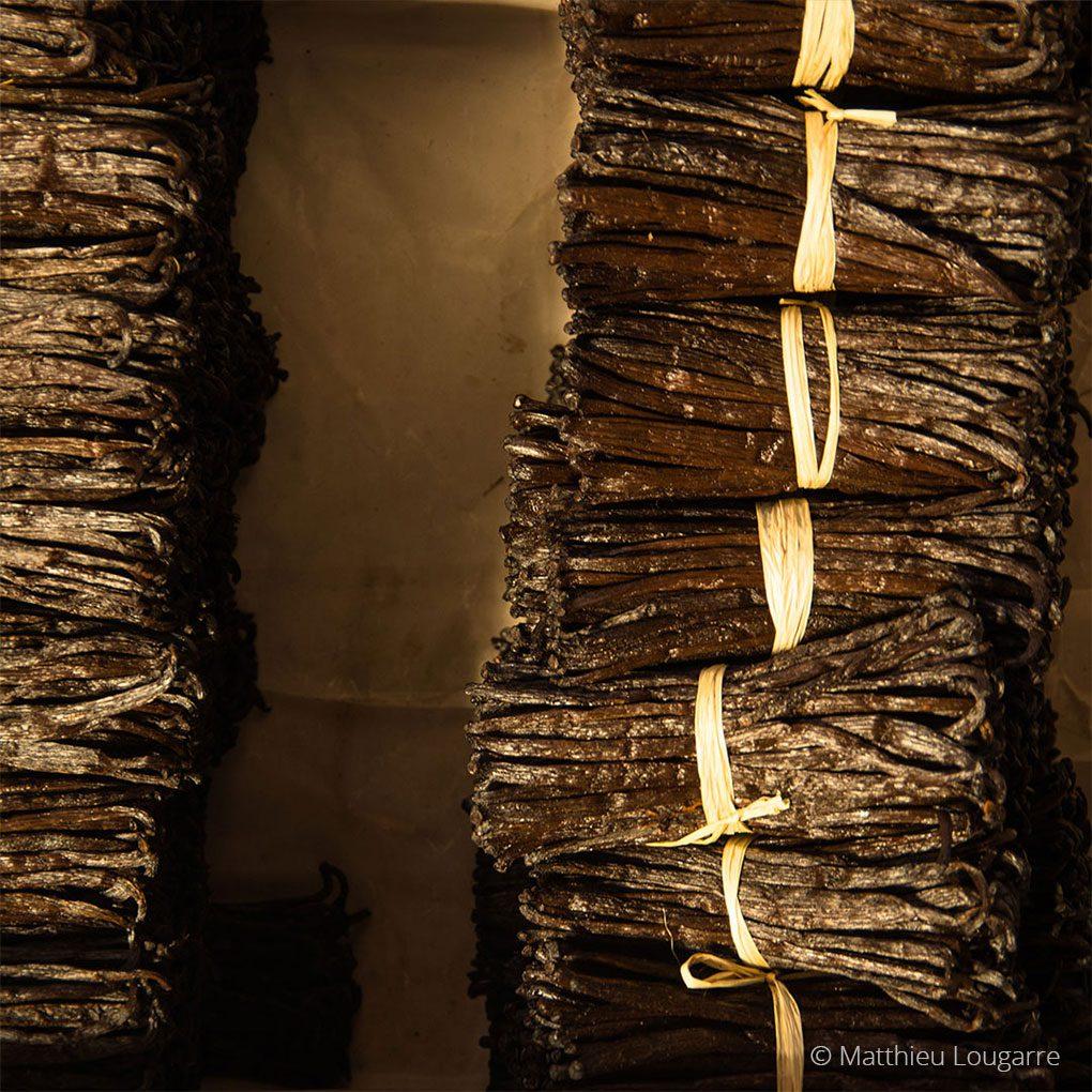 Agri-Madagascar-Vanilla-©-Matthieu-Lougarre-1-1020x1020px