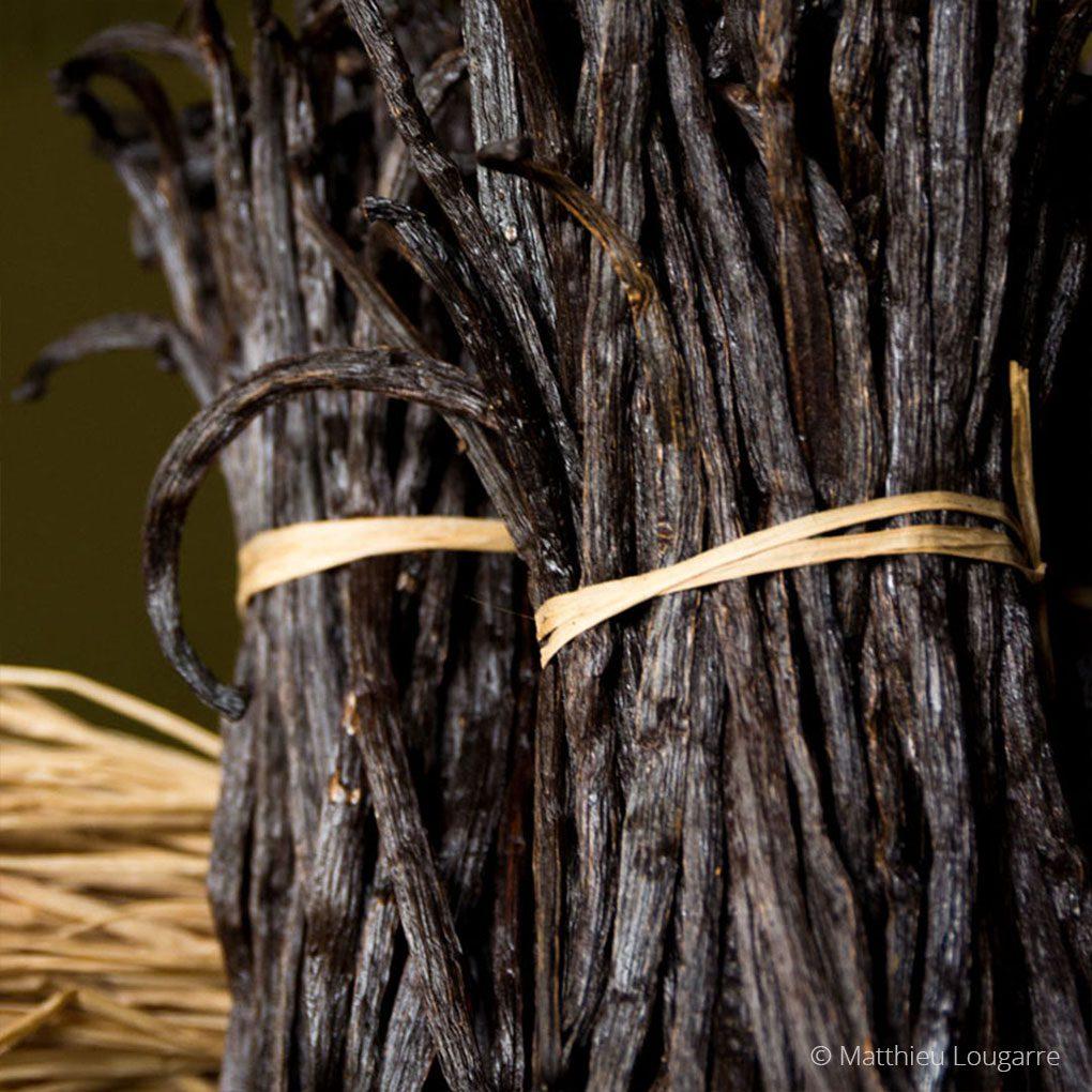 Agri-Madagascar-Vanilla-©-Matthieu-Lougarre-2-1020x1020px