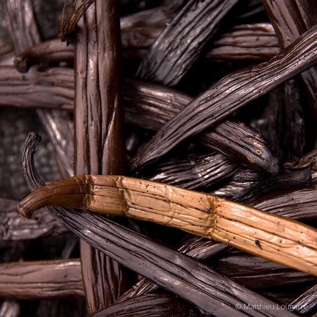 Agri-Madagascar-Vanilla-©-Matthieu-Lougarre-6-1020x1020px