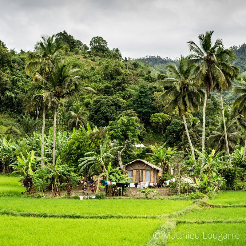Inside-Madagascar-©-matthieu-lougarre-2-800x800px